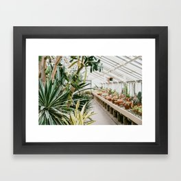 Botanical Garden Tropical Framed Art Print