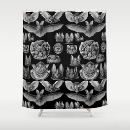 1904 Haeckel Chiroptera Shower Curtain