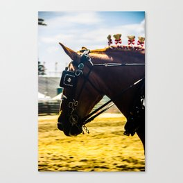 With Ribbons in His Hair Canvas Print