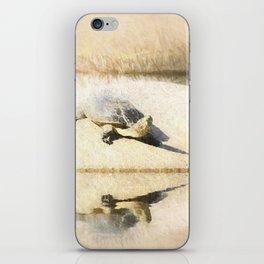Hilaire's toadhead turtle iPhone Skin