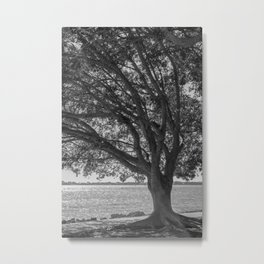 Sarasota Bayfront 2 Metal Print