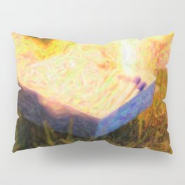 Fire OG Pillow Sham