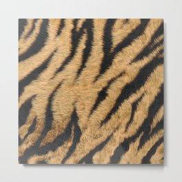 Beige and brown realistic tiger fur texture Metal Print