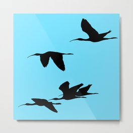 Silhouette of Glossy Ibises In Flight Metal Print
