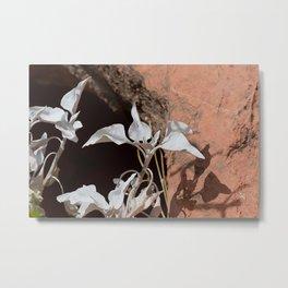 Silver Whites in the Desert Metal Print