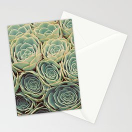 Sea of Succulents Stationery Cards