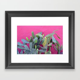 cactus i. colombia. Framed Art Print