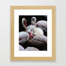 a crying shoulder Framed Art Print