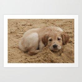 Só -Sand Dogs Series (Cachorros de Areia) - por Gustavo Souto Art Print