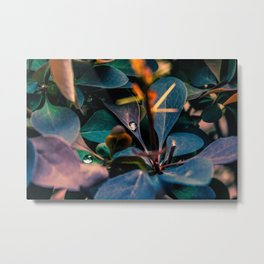 Close to nature Metal Print