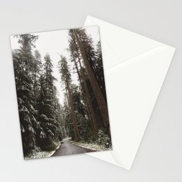 Redwood Forest Adventure II - Nature Photography Stationery Cards