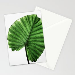 Leaves 11 Stationery Cards