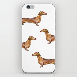 Dachshund Dog Watercolor Painting  iPhone Skin