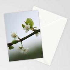 Victoria Plum Blossom Stationery Cards