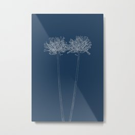 Agapanthus Blueprint Metal Print
