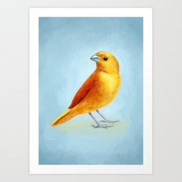 Wild Canary Art Print