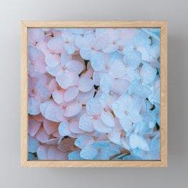 Beautiful Hydrangeas Framed Mini Art Print