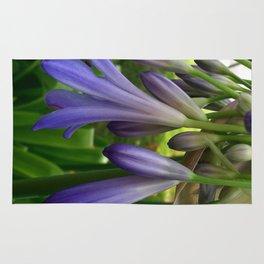 Purple Agapanthus Rug
