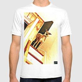 Vertigo Dog T-shirt