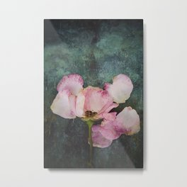 Wilted Rose II Metal Print