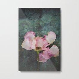 Wilted Rose II Metal Print