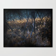 Swampy Field Forest Canvas Print