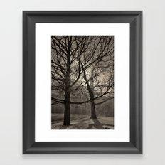 Snow Drifting with Large Trees, Bristol  2013 Framed Art Print