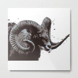 male goat Metal Print