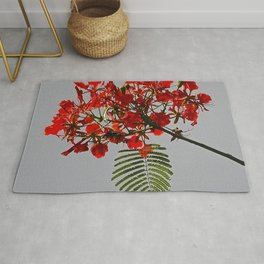 Tropical Tree Royal Poinciana With Beautiful red Flowers Rug