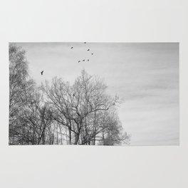 Crows Rug