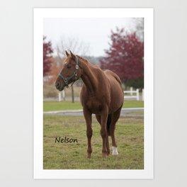 Nelson - NNEP Ottawa, ON Art Print