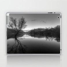 Tree Lake Laptop & iPad Skin
