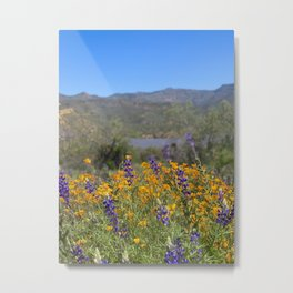 Arizona Wildflowers I Metal Print