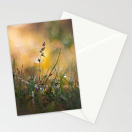 Beyong the Imagination Stationery Cards