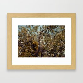 It's that time of the Year Framed Art Print