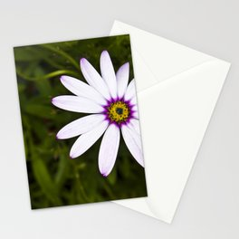 Close up of a white and lilac daisy Stationery Cards