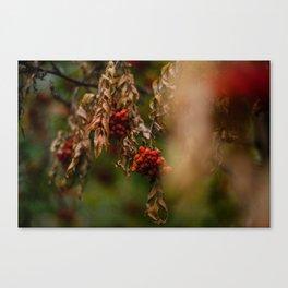 Bright Autumn V Canvas Print
