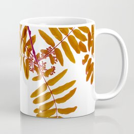 Fall Color Leaves White Background #decor #society6 #buyart Coffee Mug