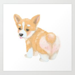 Welsh Corgi puppy Art Print