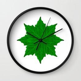 Decorative Ornament Isolated Plants  Wall Clock