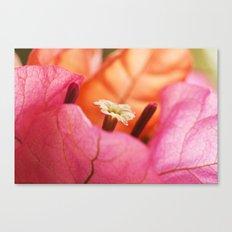 Beautiful Brazilian flower's Heart  91 Canvas Print