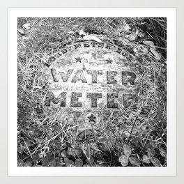 Water Meter Art Print