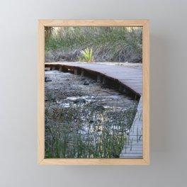 Wooden Pathway Through Desert Oasis 3 Coachella Valley Wildlife Preserve Framed Mini Art Print