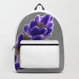 Lavender Photo Backpack