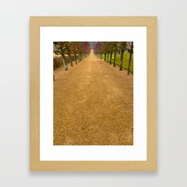 Orange Path Framed Art Print