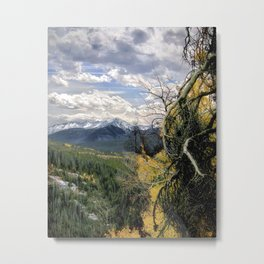 Wilderness Trail Metal Print