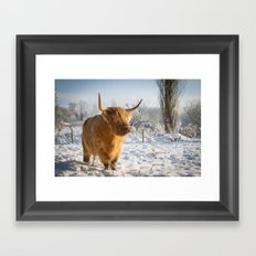 Highland Cow in the snow Framed Art Print
