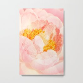 Beauty Elevation - Fine Art Pink Peony Photography, Flower Metal Print