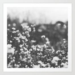 Vintage Meadow Art Print