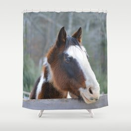 Talon at attention  Shower Curtain